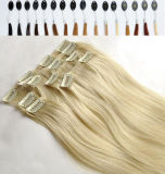Remy Hair Extensionの上のTen 100%年のHuman Straight Clip