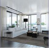 Finestra di alluminio bianca ricoprente della polvere popolare