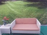 Insieme della mobilia del sofà del rattan del giardino