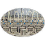 Máquina de rellenar del agua líquida estándar automática del Ce (JND 606015)