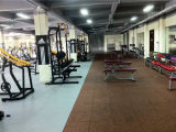 Equipo de la aptitud/de la gimnasia del edificio de carrocería para la prensa ISO-Lateral del pecho de la pendiente (HS-1008)
