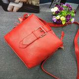 Precio de fábrica de los bolsos de los bolsos de las mujeres del cuero genuino de Cusotmize Emg4684
