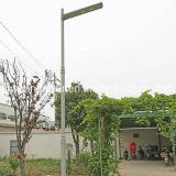 2016 a alta qualidade 30W integrou tudo em uma luz de rua solar do diodo emissor de luz