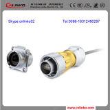 Cable connecteur Rj45 en gros/connecteur protégé de Rj45 Conector/Metal Rj45