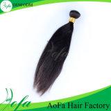 Prolonge de trame de cheveu de cheveux humains de 100% de double européen d'armure