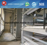 Jaula automática de la parrilla de los pájaros con el sistema de consumición y que introduce (H-4L120)
