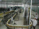 De commerciële Installatie van de Verwerking van het Vruchtesap