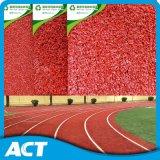 Deportes del acto de Guangzhou que funcionan con la hierba artificial de la pista, césped sintetizado para el cauce