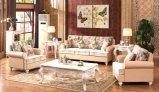 Sofa moderne de cuir de sofa de cuir véritable