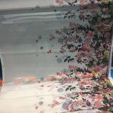 El nuevo diseño de la flor de la manera imprimió la tela Chiffon de la ropa de la alineada