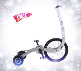 Children Three Wheel BikeのためのLightweightの高品質Outdoor Exercise Bike