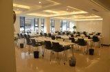 De Moderne Eettafel van uitstekende kwaliteit van de Koffie van het Roestvrij staal van de Stijl Houten