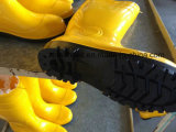 Op zwaar werk berekende Veiligheid die de Laarzen van pvc werken, die Schoenen werken