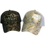 O camionista do engranzamento da impressão ostenta o chapéu, boné de beisebol