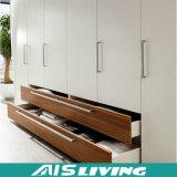 Het multifunctionele Meubilair van de Kast van de Garderobe Storge van de Installatie Gemakkelijke (ais-K159)