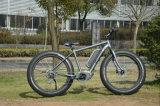 "26 "" 250-500W中間DriveのMountain E-Bike (TDE10Z)"