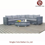 Rattan grigio Sofa Set per Outdoor (1503)