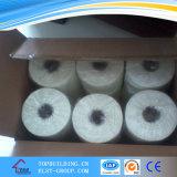 Largeur de bande de maille en verre de fibre 50/100 millimètre