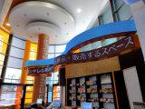 Écran polychrome d'intérieur supérieur d'affichage à LED de la vente P6.66&P10 SMD3528 Flexible&Soft