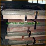 Piatto duplex della lamiera di acciaio dell'acciaio inossidabile