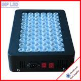 Il sistema idroponico 300W LED coltiva gli indicatori luminosi per la serra