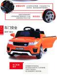 Провод нержавеющей стали ягнится Bike корзин e пикника, езда на автомобиле, автомобиле батареи LC-Car060
