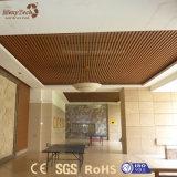 Comités van het Plafond van pvc van de Decoratie van het Onderhoud van de Weerstand van de brand de Vrije in China