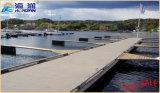 Konkreter modularer sich hin- und herbewegendes Dock-Plastikponton hergestellt in China