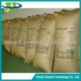 Éviter le sac d'air gonflable de bois de calage de soupape de dommages de marchandises de transport