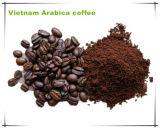 Кофеий улушителя энергии выдержки Tongkat Али мыжской