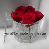 Cadre acrylique de fleur de vente directe d'usine, aucune fuite