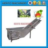 Machine de nettoyage industrielle de machine à laver à la pomme de terre avec du CO