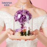 Flor verdadera del 100% Rose en el vidrio para el regalo de la tarjeta del día de San Valentín