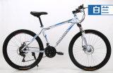 Велосипед Bike горы MTB высокого качества дешевый