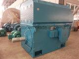 高圧3-Phase ACモーターYks6303-10-800kwを冷却する6kv/10kvyksシリーズ空気水