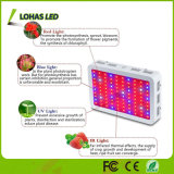 300W 600W 900W 1000W 1200W 가득 차있는 스펙트럼 LED 플랜트는 빛을 증가한다