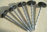 De uitstekende kwaliteit Gegalvaniseerde Spijkers van het Dakwerk van de Paraplu