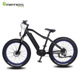 Fat Tire 250W 350W Motor MID Drive Electric Bicycle
