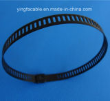 manufatura da cinta plástica do aço inoxidável do fechamento da esfera de 4.6*1000mm