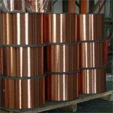 De standaard Draad van het Staal van het Koper ASTM Beklede CCS voor bindt Draad
