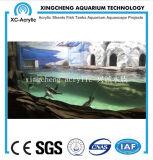 Precio Fishbowl material de acrílico