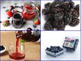 良質の乾燥されたブルーベリーを作り出すブルーベリーのフルーツのドライヤー