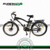 Elektrisches Fahrrad mit Plastikschutzblech für Stadt-Männer