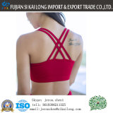 Hete Hoogste GSM van de Yoga van de Bustehouder van het Geslacht van het Vest van de Sport van de Bustehouders van de Sport van de Opdrukoefening van de Verkoop Hete Rode en Zwarte Holle uit Slijtage