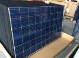 poli comitati solari 250W per illuminazione della via LED