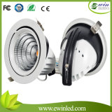 Cardan commercial Downlight du diamètre 200mm 50W DEL d'éclairage