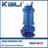 고품질 무쇠 전기 잠수할 수 있는 하수 오물 수도 펌프 (WQ15-15-1.5)