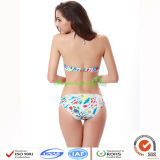 De Stationaire Driehoek Swimwears van dames