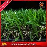 Tappeto erboso naturale dell'erba di gioco del calcio per il campo di calcio
