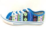 Nuevos zapatos de lona planos de los zapatos ocasionales de la inyección de las mujeres de la llegada (FFDL0114-01)